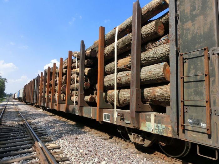 Train Transporting Tree Logs