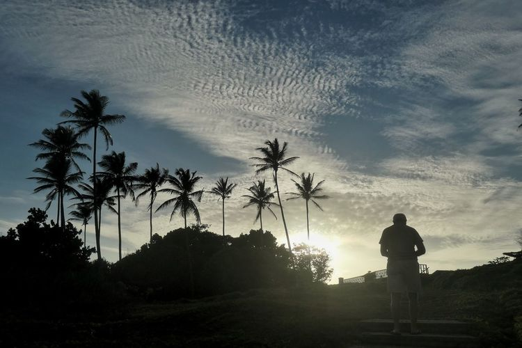 https://youtu.be/j5AUm_xaE9A Treescollection Trees And Sky Clouds And Sky Clouds EyeEmNewHere EyeEm Nature Lover Tree Palm Tree Men Sunset Silhouette Standing Sky Cloud - Sky