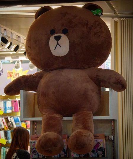 Throwback 03242016 Taipei Taiwan 台北 台灣 台北地下街 Y區 台北地下街y區 LINE Brown TheBear Bear Brownbear Linebear