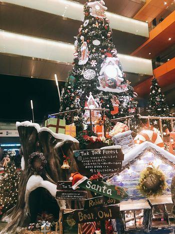 Follow #f4f #followme #TagsForLikes #TFLers #followforfollow #follow4follow #teamfollowback #followher #followbackteam #followh Followme Decoration Christmas Celebration Christmas Decoration Holiday christmas tree Indoors