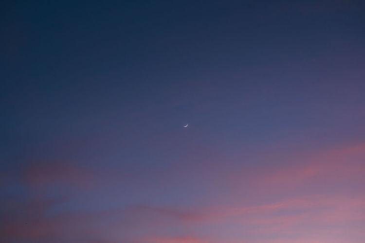 Low angle view of moon at sunset