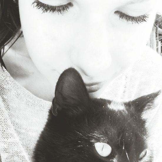 Black Cat Relaxing Eyem Best Shot Like This #?????