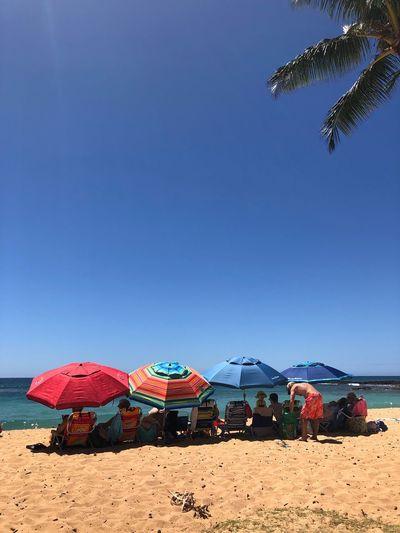 Beach umbrellas against clear sky