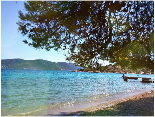 Greece Salamina Trees Sea Beach Sand Nature Mountains Summer Dock