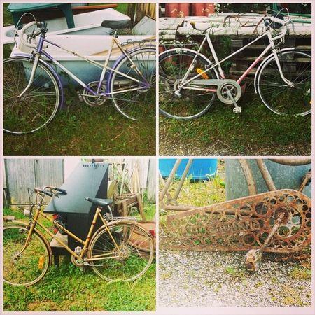Fahrräder auf einem 2.000 qm Antikmarkt . Besonders das Husquarna Rad finde ich klasse - ist aber total im Eimer Loppis Flohmarkt Schweden