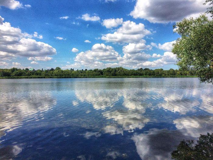 Reflection EyeEm Gallery Blue Sky EyeEm Nature Lover Cloud - Sky Water Sky Tree Reflection Plant Nature Blue Lake Outdoors Sunlight