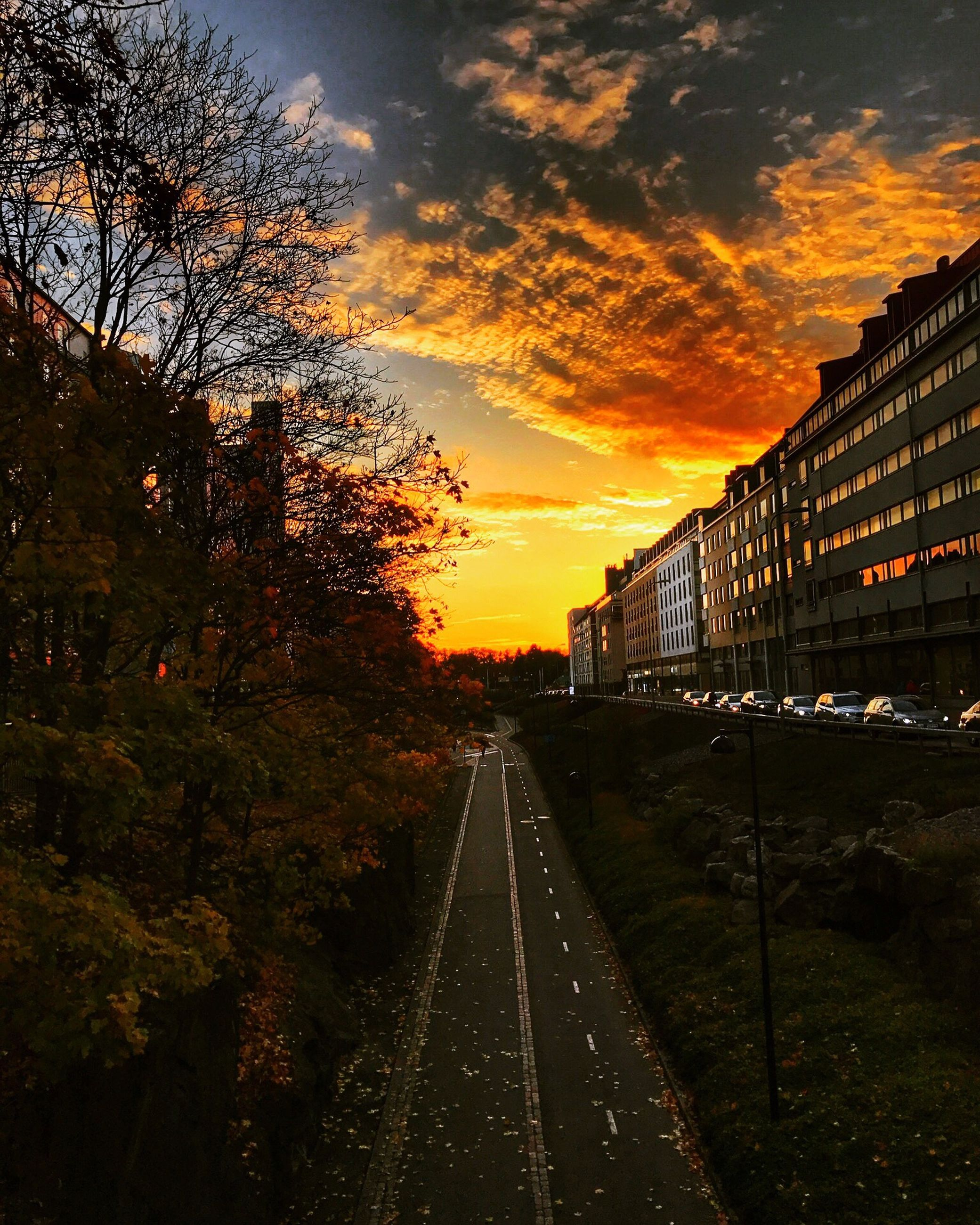 sunset, transportation, rail transportation, tree, the way forward, sky, cloud - sky, no people, outdoors, nature, architecture, day