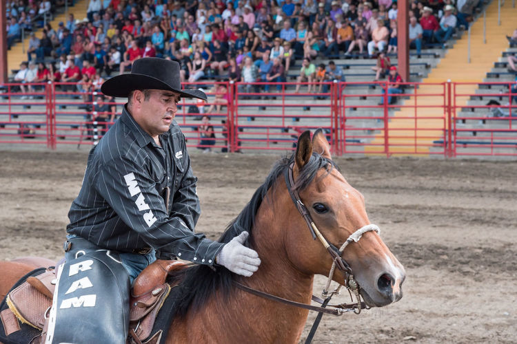 Williams Lake, British Columbia/Canada - July 1, 2016: man pats his horse's neck during a quiet moment in the arena between competitions at the 90th Williams Lake Stampede. 90th Williams Lake Stampede Arena Canadian Professional Rodeo Association Cowboy Horse And Rider Man Rodeo Travel Affectionate Candid Close-up Country Western Cowboy Hat Documentary Editorial  Horse Horseback Riding Outdoors person Portrait Professional Rodeo Stampede Stampede Grounds Tourism Western Dress