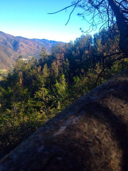 View Enjoying The View Enjoying Life Taking Photos Ensenada Hiking Nature Mountains