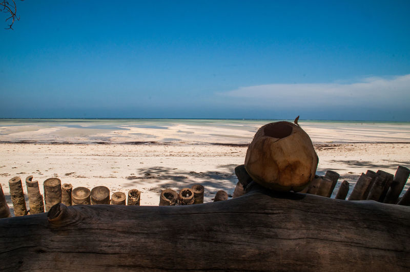 Check This Out Coconut EyeEm Best Shots EyeEm Nature Lover EyeEm Selects EyeEm Gallery Stunning Zanzibar Beauty In Nature Coconut Juice Good Life Nature Ndame Beach No People Non-urban Scene Paje Popular Photos Scenics - Nature Sea Sky Tranquil Scene Summer Road Tripping