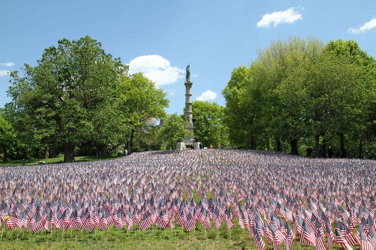 Memorial Day -