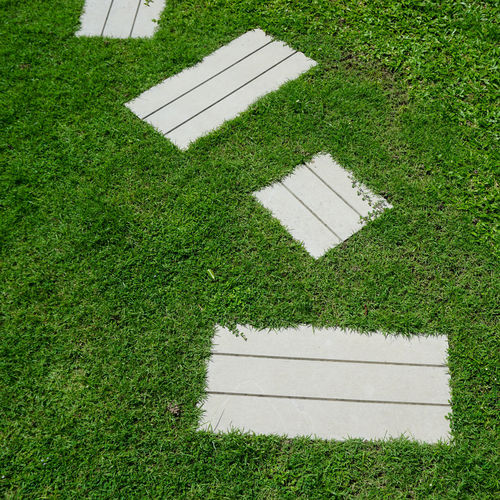 High angle view of lawn on field