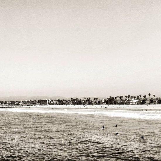 Soaked up the sun while at Venice Beach! 🌊🌊☀☀ Beach Beachtime Ocean FamilyTime Family Creatingmemories Sunny Sunnyday Sunnydays Soaked Enjoy Surfsup Surfing Surf Water Surfboard Smile Laugh Moment Moments Beachparty Summer Summerfun Fun Funtime funtimes travel TheWorldGuru VeniceBeachGram