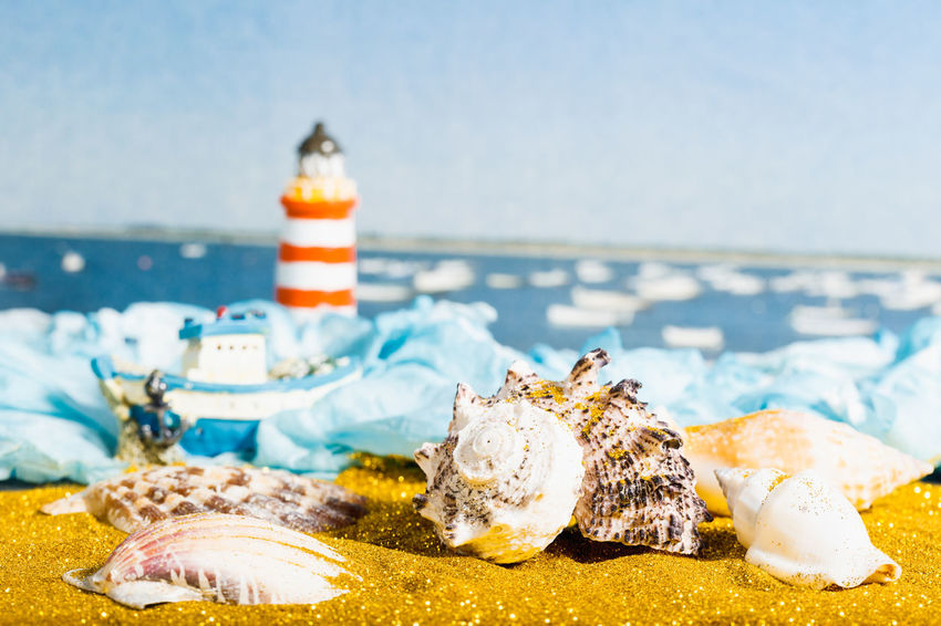 Glitter Gold Holiday Animal Animal Shell Beach Close-up Fish Focus On Foreground Food Food And Drink Freshness Luxury Marine Nature No People Sand Sea Seafood Seashell Shell Symbol Vacation Wealth