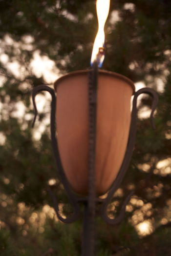 Candles Flame Soft Torchlight Burning Close-up Evening Evening Flame Evening Sky Fire Flame Heat - Temperature Muted Flame Nature No People On Fire Outdoors Outside Relaxation Soft Focus Strong Flames Summer Nights Tiki Tiki Torch Tree