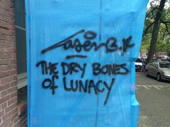 The Dry Bones Of Lunacy Street Art Graffiti Urban Art Laser 3.14