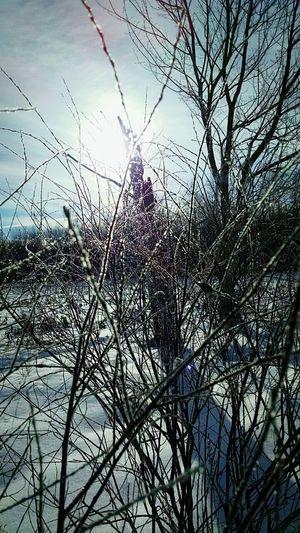 Fremont, Michigan, USA Winter My Running View