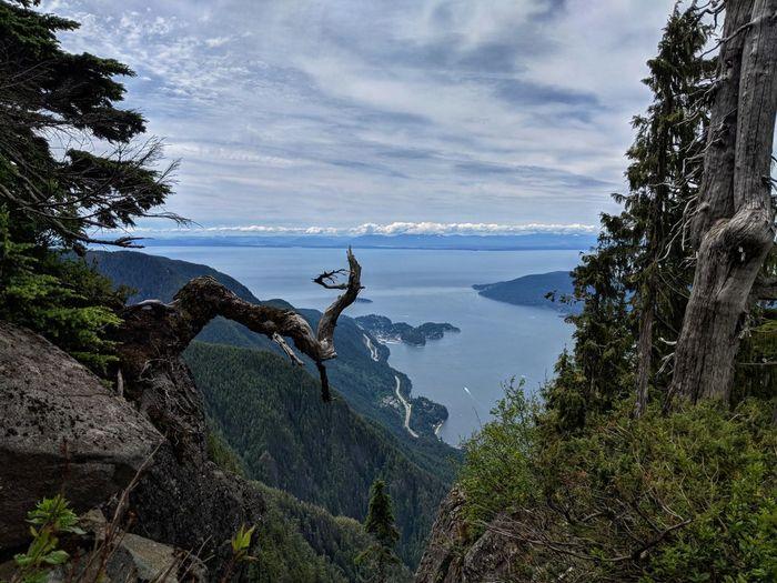 Forest Mountain Hiking EyeEmNewHere EyeEm Best Shots Tree Water Sea Sky Horizon Over Water Landscape Cloud - Sky Mountain Peak