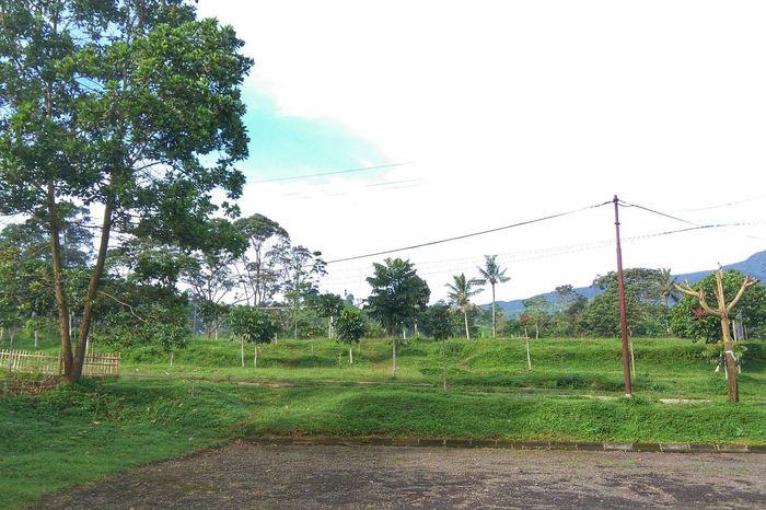Mondaymorning Morning Landscape Nature Naturelovers EyeEm Vision . At Kecamatan Ciater Ciater Subang