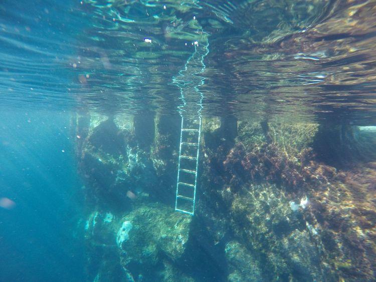 Faial Island Natural Swimming Pools Ocean Capelinhos Deep Sea Ladder Sunlight Azores Islands