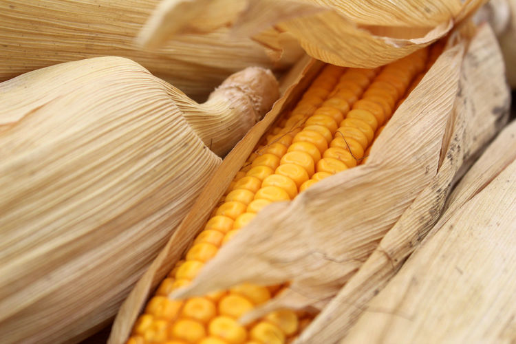 Corn Food Freshness Crop  Raw Food Close-up Still Life Sweetcorn Corn On The Cob Yellow Vegetable Healthy Eating Wellbeing Agriculture High Angle View Vegetarian Food Cereal Plant