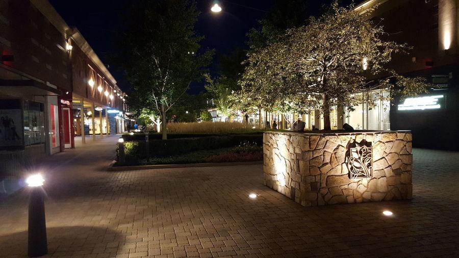Illuminated Night Architecture City Life