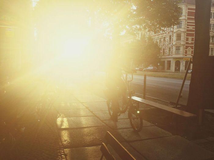 Sun shining through city