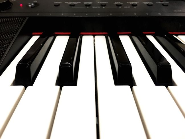 Keys Music Musical Instrument Piano Key Piano Arts Culture And Entertainment Keyboard Instrument Synthesizer White Color Black Color Close-up Indoors  No People