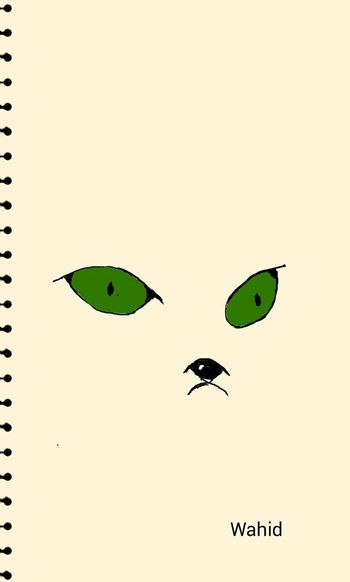 My Drowing Cat Face