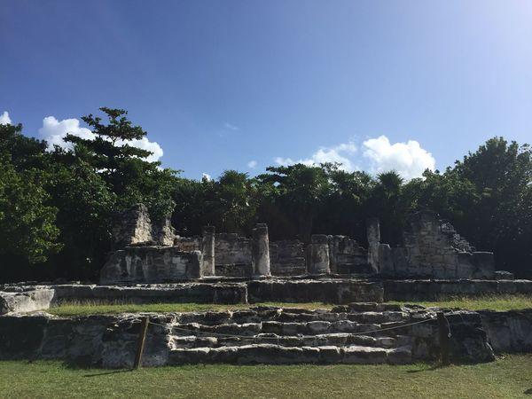 Mexico Mayan Ruins Sun Hotweather History Green Nature Having Fun Vacation El Rey King Temple Ruins Spanish Fun Travel Enjoying Life Adventure