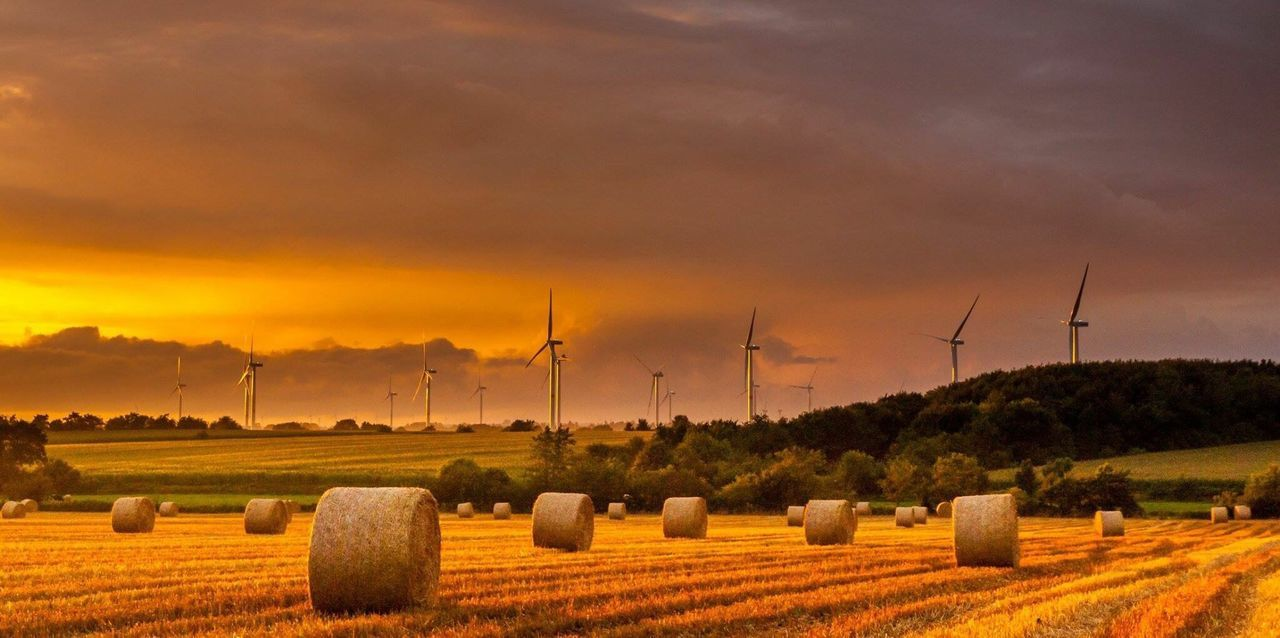 bale, rural scene, field, environmental conservation, wind turbine, sunset, wind power, agriculture, hay bale, sky, no people, landscape, tranquility, tranquil scene, nature, hay, beauty in nature, outdoors, windmill, grass, tree, day