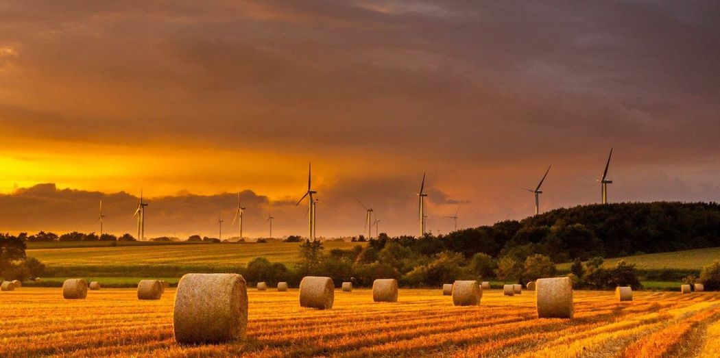 Lost In The Landscape Bale  Rural Scene Field Sky Agriculture Environmental Conservation Sunset Wind Turbine Wind Power Hay Bale Landscape Hay No People Tranquility Tranquil Scene Nature Beauty In Nature Outdoors Cloud - Sky Windmill