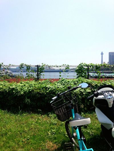 Summer days Waterfront Summer2015 On A Stroll Enjoying The Sun Bicycling