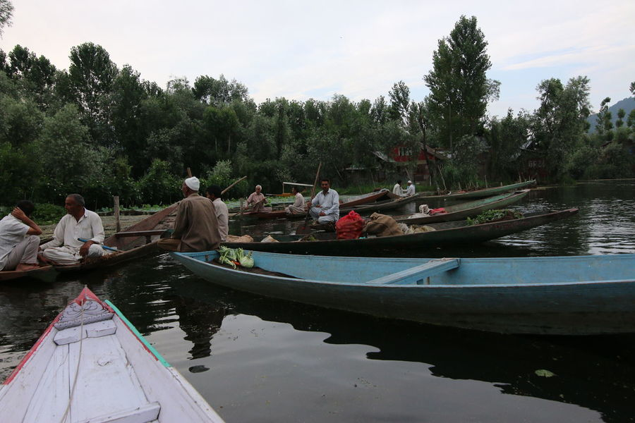 Water Life in Dal Lake Beauty In Nature Boat Day Leisure Activity Lifestyles Men Mode Of Transport Moored Nature Nautical Vessel Oar Outdoors People Real People River Rowboat Sky Togetherness Transportation Tree Water Women