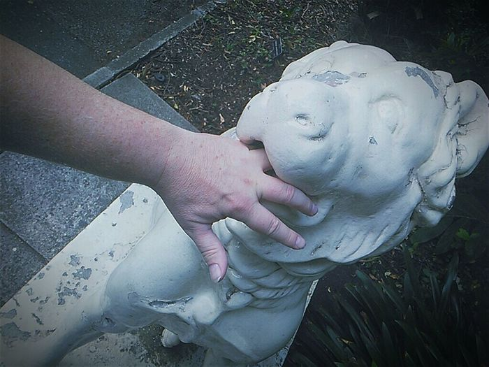 White Bite Once Bitten Oncebitten Dog Animal Representation That's Gotta Hurt Pain Sit Ubu Sit Helpmeplease Help Dogs Ouch Dog Bite Ouch Ouch.... Stone Dog Bitten Stone Sculpture Statue Statue Colection Sculptures Sculpture Statueporn Statues Stone Statue Check This Out Taking Photos WTF What The F**k, Is This ? Hand
