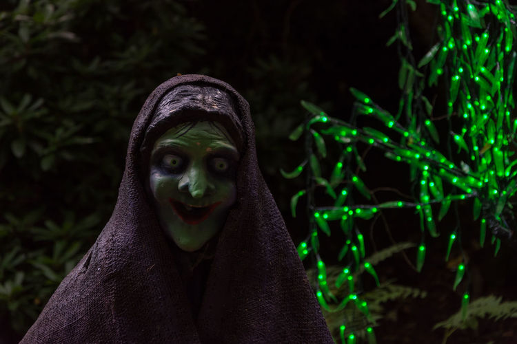 scary witch statue with green fairy lights . Green Halloween Holidays Statue Capetown Dark Background Face Expression Fairy Lights Frightening Nose Scary Witch The Week On EyeEm
