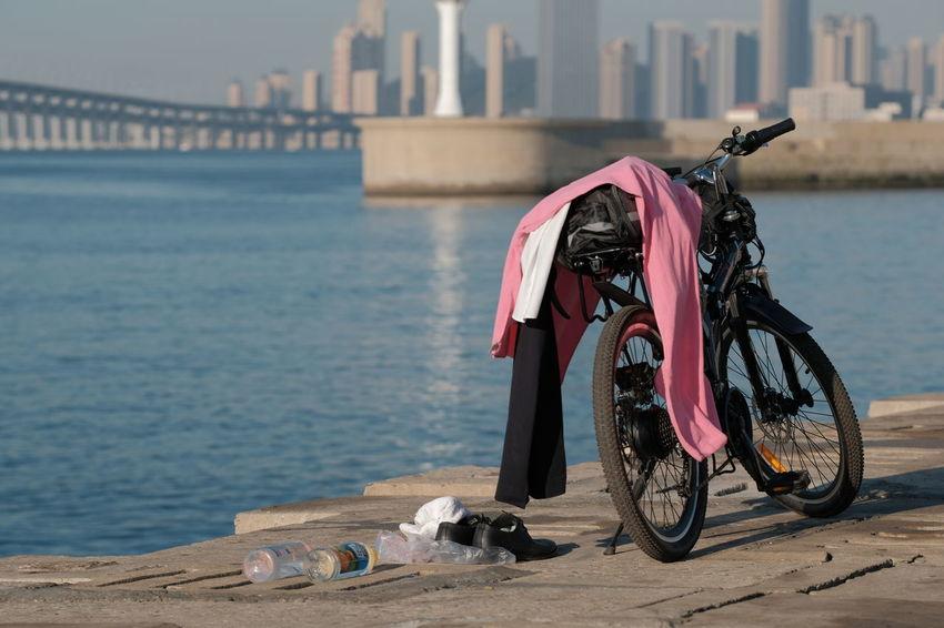 Bay Cityscape Cycle Cycling Dalian Dalian City Dalian Of China Dawn Pink Sea Swimming Xinghai Xinghai Bay Xinghai Bridge