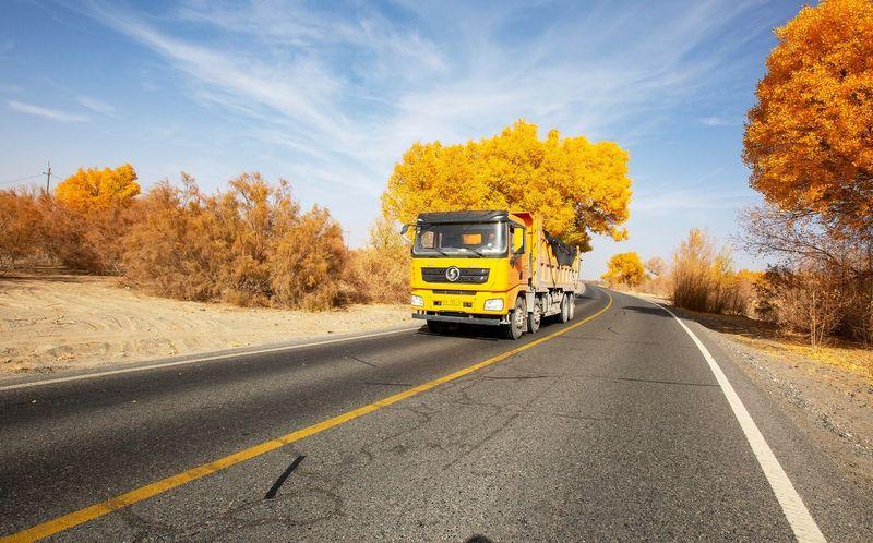 好心情(1) EyeEm Selects Transportation Road Mode Of Transportation Land Vehicle Tree Nature