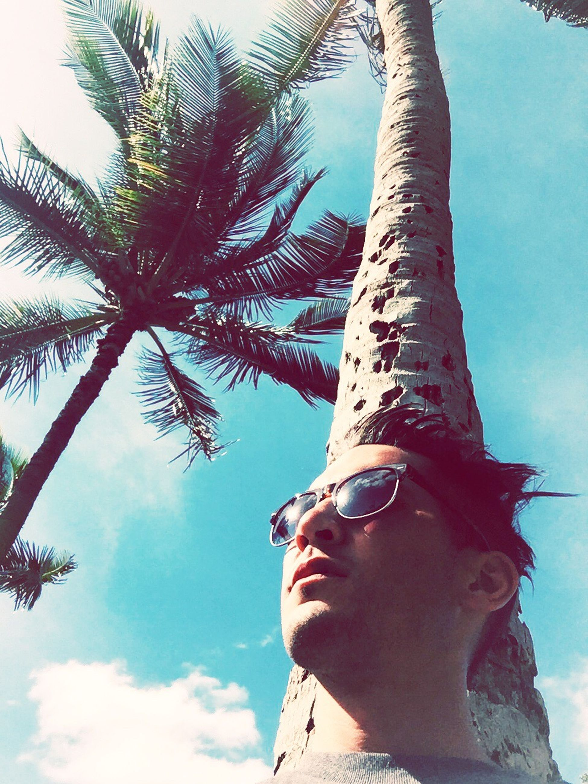 low angle view, tree, sky, sunlight, close-up, tree trunk, lifestyles, day, portrait, outdoors, leisure activity, looking at camera, headshot, blue, front view, sunglasses, part of, palm tree