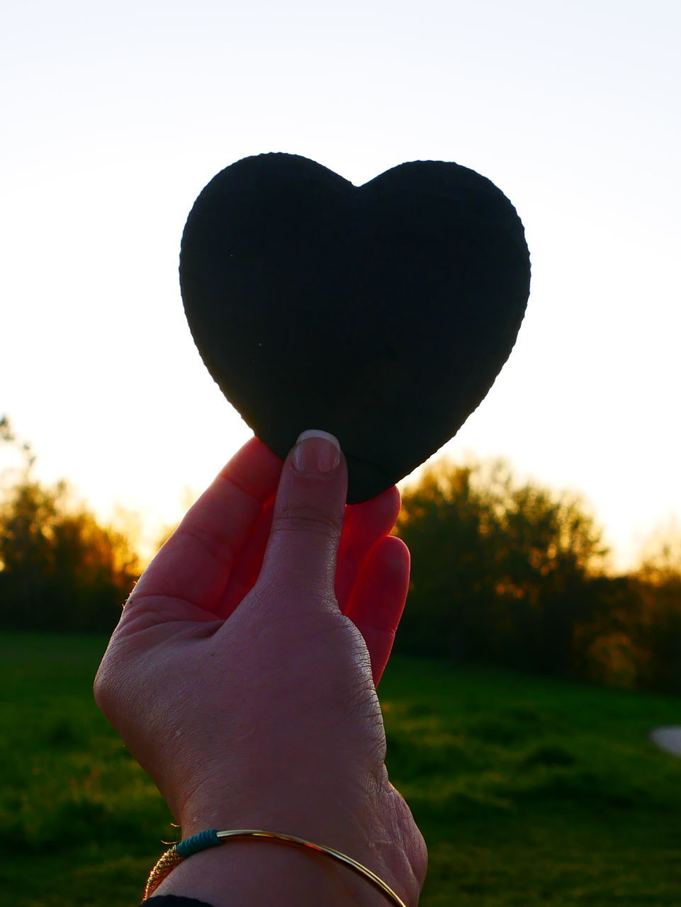 human hand, hand, heart shape, love, real people, one person, human body part, positive emotion, finger, human finger, emotion, sky, nature, holding, sunset, personal perspective, plant, focus on foreground, lifestyles, unrecognizable person, body part, outdoors