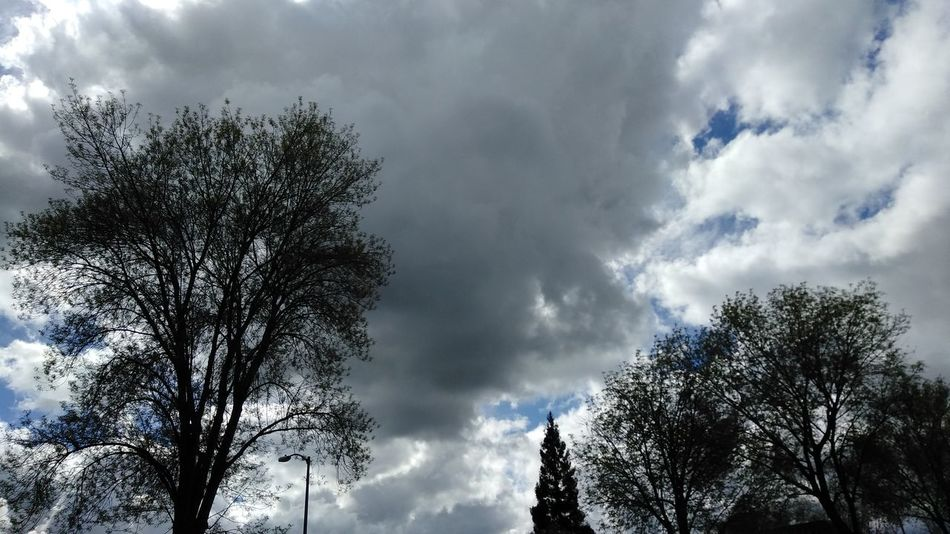 Stormy Weather Cloud - Sky Low Angle View Nature Sky No People Storm Cloud Beauty In Nature No Edit / No Filter My Cali Life Tranquility Dramatic Sky Smartphone Photography Sacramento, California ( USA ) Smart Phone Photographer Norcal From My Point Of View Outdoors