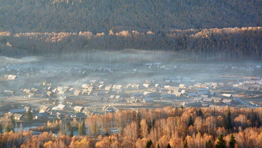 The autumn fog