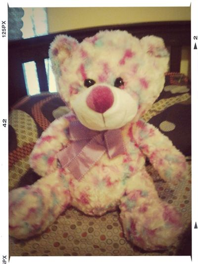 The Bear My Baby Got Me For Valentine's Day!!! I Love It Already!!!