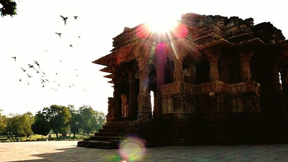 Sun temple Sun Temple Gujrat Birds