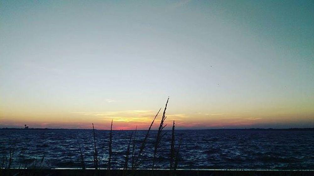 Another Beautiful Shot of tonight's Sunset Navarrebeach LoveFl Emeraldcoast Emeraldcoasting HTCOneM9 Htconelife Oneography 20 .7mp @htc @HTCUSA @HTC_UK @HTCelevate @HTCMEA @HTC_IN @HTCIreland @HTCCanada @HTCMalaysia @htcsouthasia @htcfrance TeamHTC IBleedGreen @sharealittlesunshine @pureflorida
