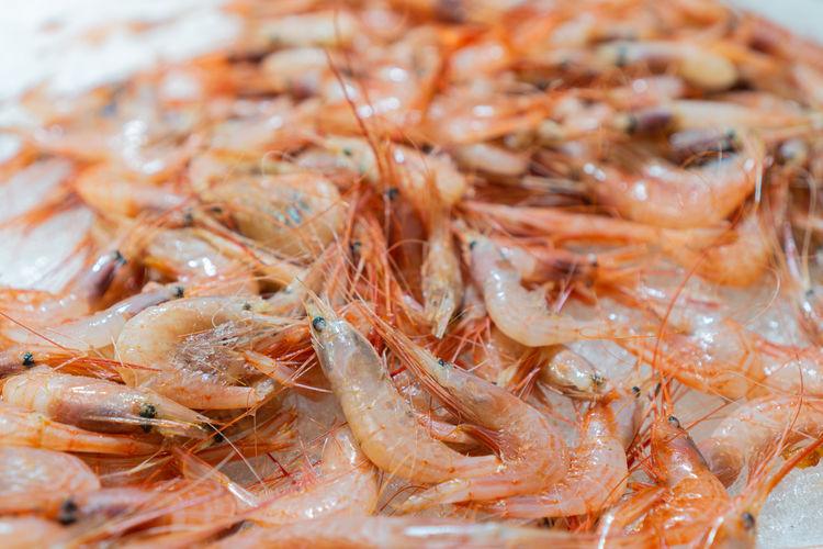 Fresh shrimp on