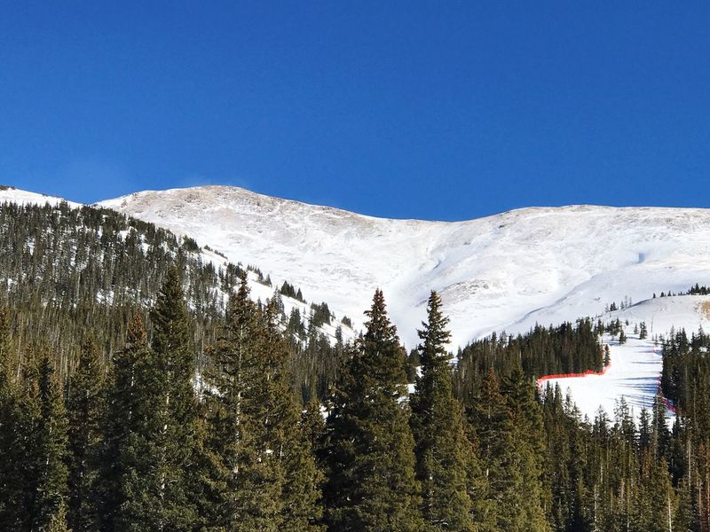 Snow Copy Space Winter Nature Blue Tree Mountain Clear Sky Tranquility Cold Temperature Scenics Beauty In Nature Tranquil Scene Outdoors Day No People Growth Skiing Blue Ski Trail Loveland Colorado