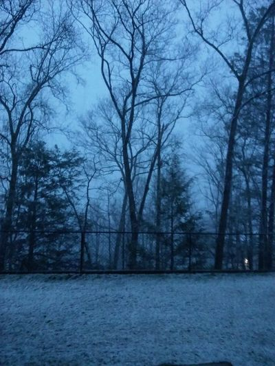 Showcase April Snowing Again!  Trees And Sky Fence Snow Covered Grass Gray Sky No Filter, No Edit, Just Photography