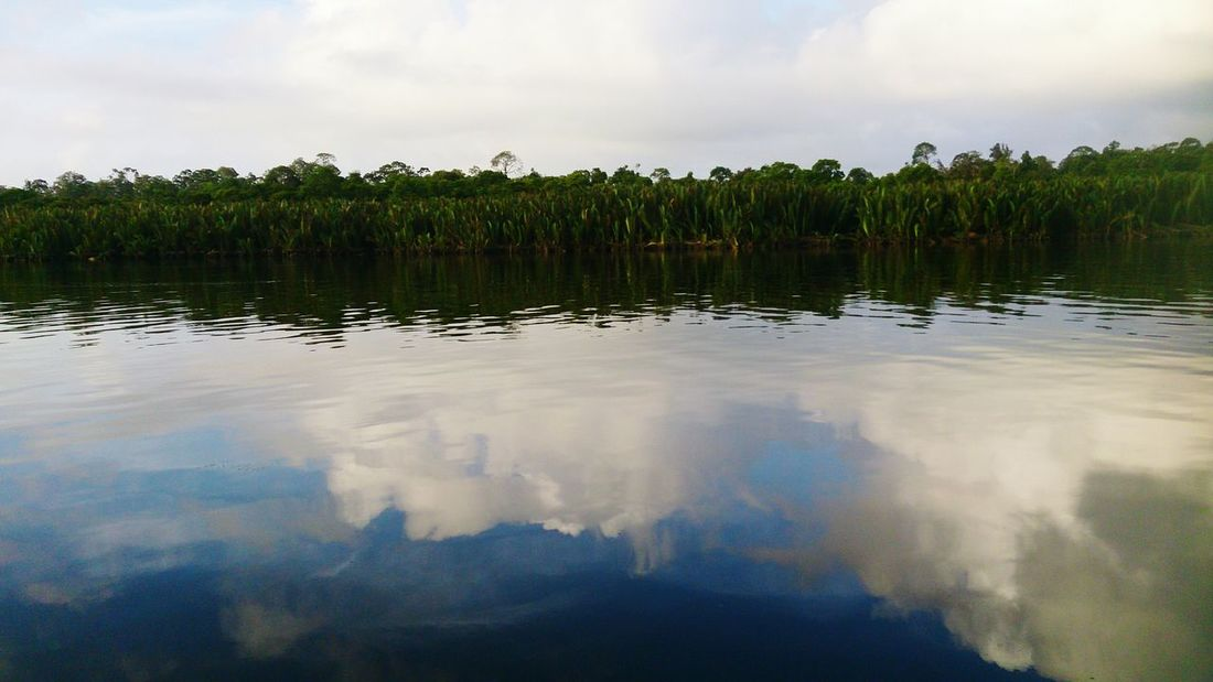 Captured this photo River View Beautiful Nature Reflections of the Clouds in the Belait River
