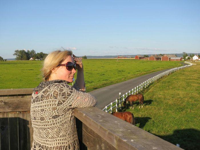 Landscape Portrait View Erstad Horses